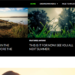 Twenty-fourteen WordPress theme